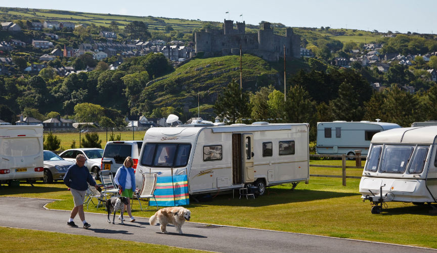 Dog Friendly Caravan Holidays + Tips for Caravan Travel With Dogs